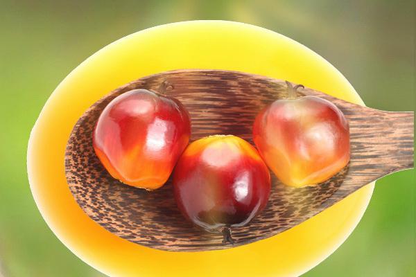 Пальмова олія: шкідливо чи ні?