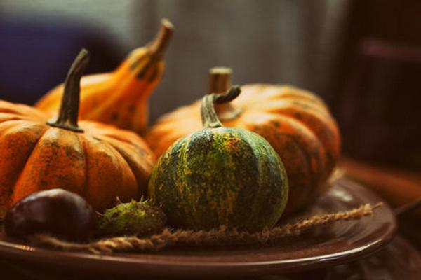 Pumpkin - health benefits and harms you need to know