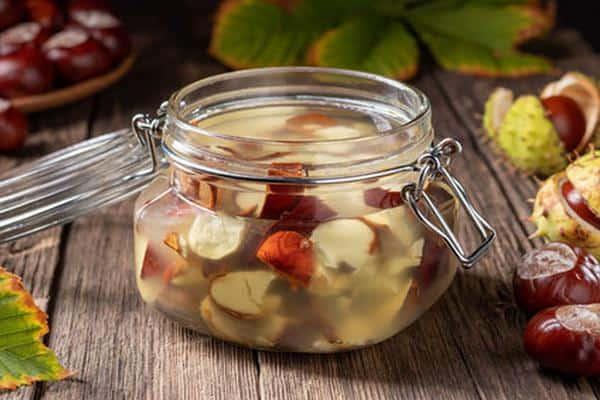 chestnut fructe tincture din varicoză)