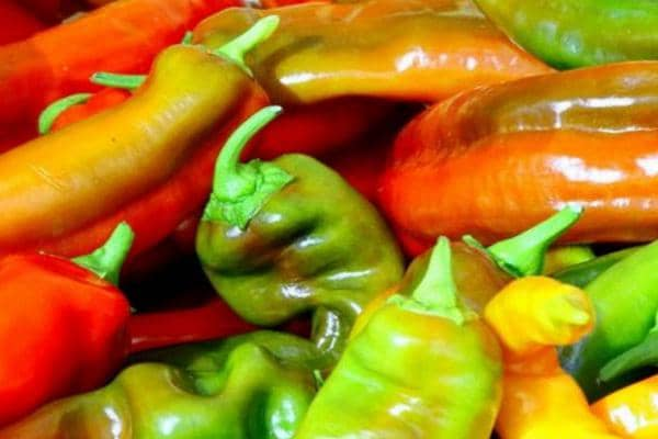 Pepper: vegetable of youth and good mood